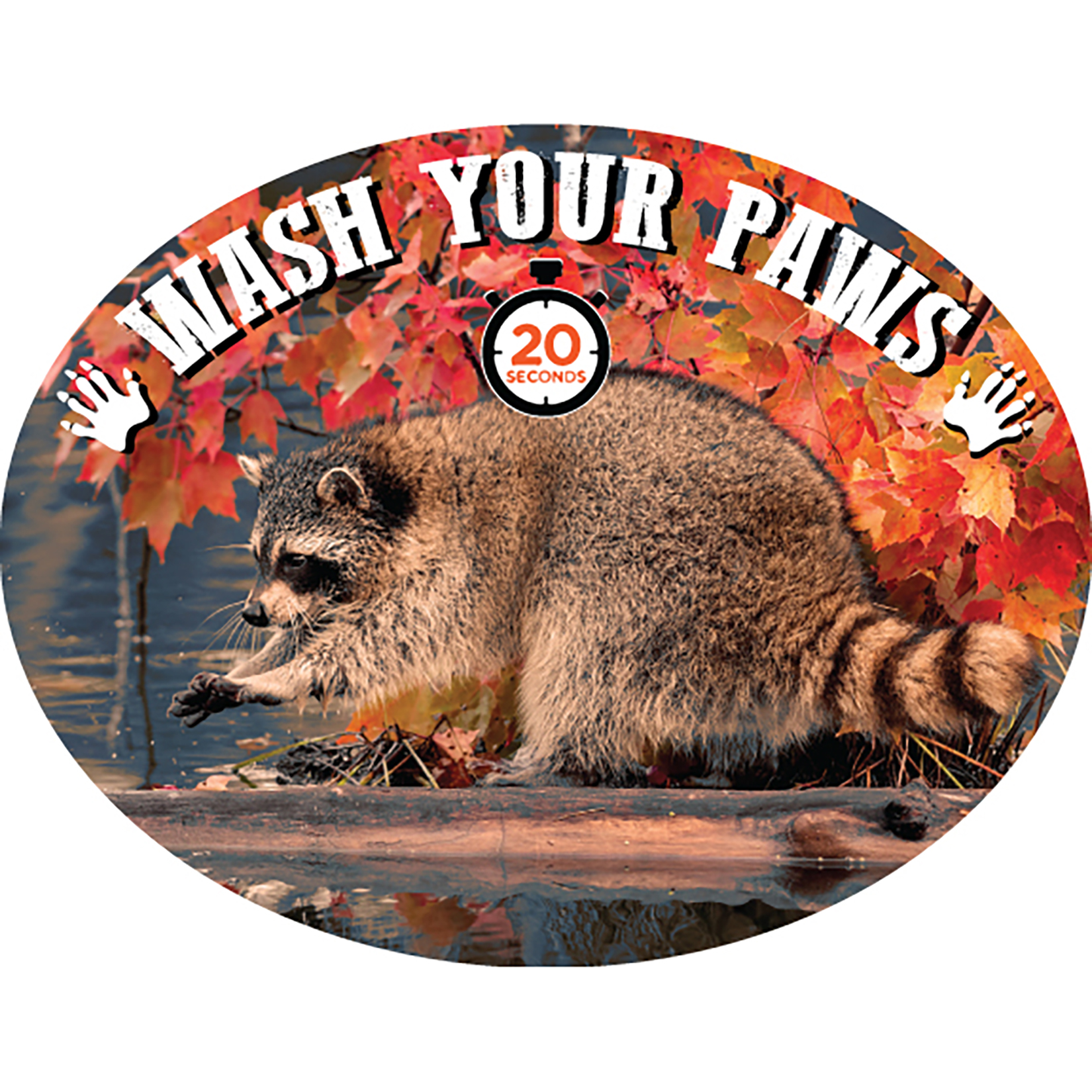 Raccoon Wash Your Paws Plaque